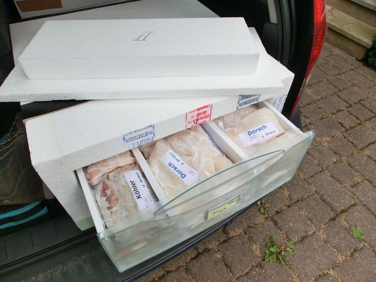 Ankunft mit gefrorenem Fisch nach 3 Tagen mit selbstgebauten Fisch-Transportkisten