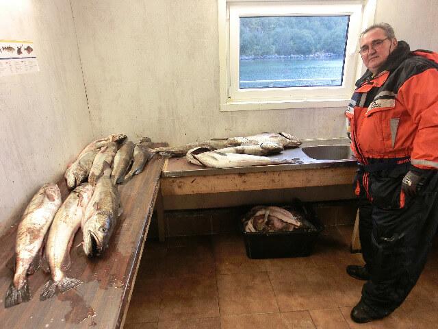 im Filetierhaus, Fischversorgung